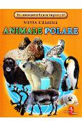 Animale polare - Cartonase - Silvia Ursache