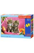 Puzzle 120. Kittens on Garden Chair