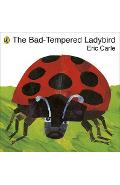 Bad-tempered Ladybird