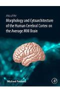 Atlas of the Morphology of the Human Cerebral Cortex on the