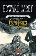 Casa Heap - Edward Carey