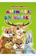 Animale salbatice - Carte de colorat A5