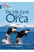 Life Cycle of the Orca