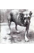 CD Alice In Chains - Alice In Chains