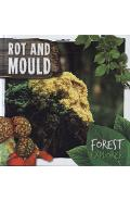 Rot & Mould