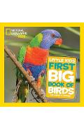 Little Kids Big Book of Birds