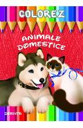 Colorez: Animale domestice