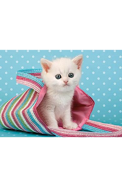 Puzzle 108 Castorland - White Cat in Bag