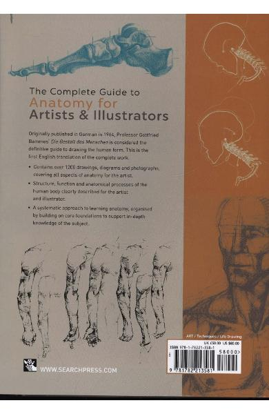 Complete Guide to Anatomy for Artists & Illustrators