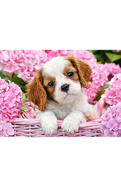 Puzzle 180 - Pup in pink flowers