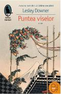 eBook Puntea viselor