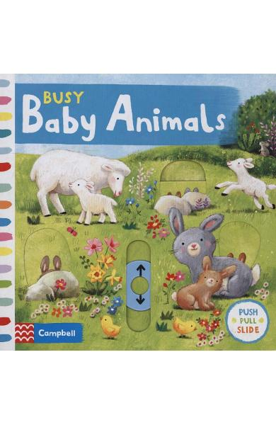 Busy Baby Animals